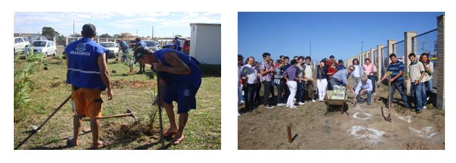 Arborização no Campus de Araranguá