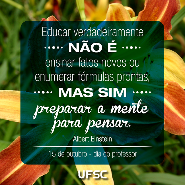 FACEBOOK_dia do professor_2014-01