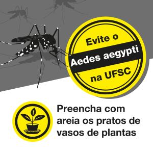 campanha-aedes_redes_sociais-04