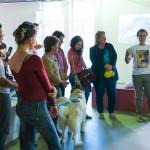 Cães Sem Diploma - Foto Henrique Almeida-5